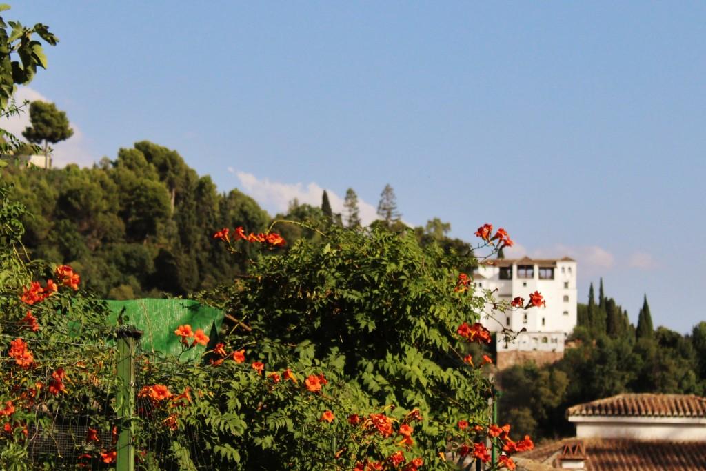 Vista del Generalife. Foto: Álvaro Barbero